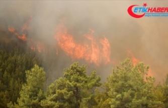 Bakan Pakdemirli Antalya'daki yangına müdahale eden iki kişinin şehit olduğunu bildirdi