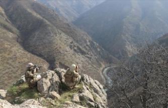 Eren-14 operasyonları kapsamında Hakkari'de 2 terörist etkisiz hale getirildi