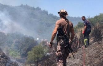 Kocaeli'de çıkan orman yangınında 20 dönüm alan zarar gördü