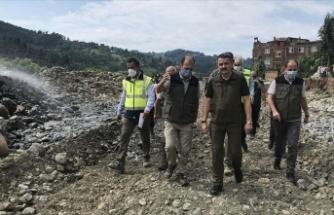 Tarım ve Orman Bakanı Pakdemirli: Doğu Karadeniz'de 700 milyon liraya varan yatırım seferberliği başlatacağız