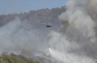 Cumhurbaşkanlığı İletişim Başkanlığı: 35 ildeki 138 orman yangınından 129'u kontrol altına alındı