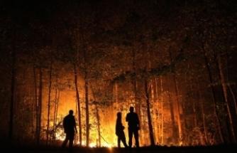Rusya, doğusundaki orman yangınlarıyla mücadeleyi sürdürüyor