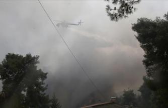 Yunanistan'da orman yangınları sürüyor