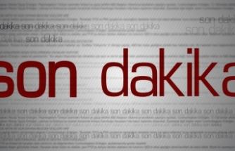 TFF Beşiktaş'ı Adana Demirspor maçında yaşanan saha içi olayları nedeniyle PFDK'ya sevk etti