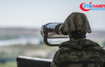 Türkiye'ye yasa dışı yollardan girmeye çalışan 2 DEAŞ'lı terörist yakalandı