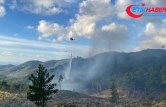Balıkesir'in Edremit ilçesinde çıkan orman yangını kontrol altına alındı