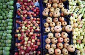 Türkiye'nin 9 aydaki yaş meyve ve sebze ihracatında zirve Rusya'nın