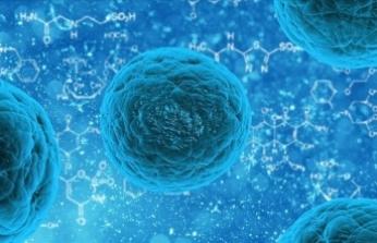 Dünya Aferez Birliği Başkanı Prof. Dr. Altuntaş: Türkiye kanser ve kök hücre alanında çok iyi