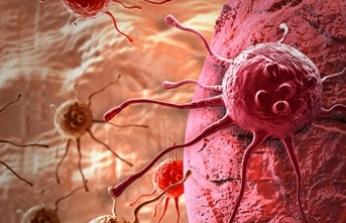 Uzmanlardan kanser tedavisi uyarısı