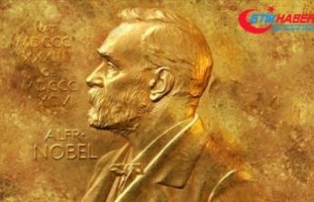 2021 Nobel Barış Ödülü'nü Maria Ressa ve Dmitry Muratov kazandı