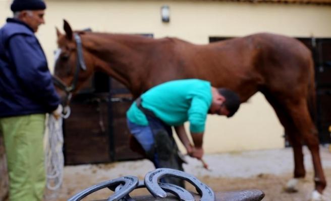 'Güzel atlar ülkesi'nin nalbantı