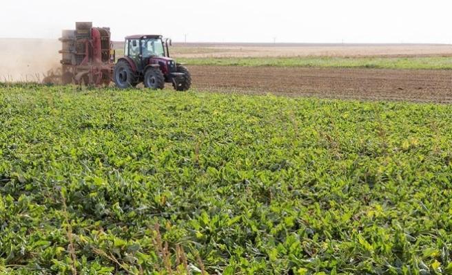 'Sigortalanabilir tarım alanlarının sadece yüzde 19'u sigortalı'