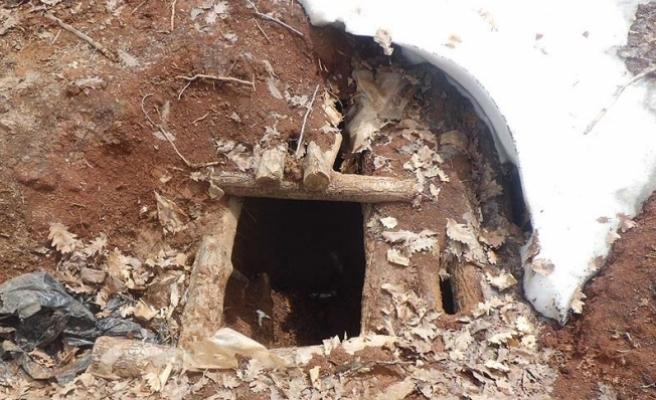 Tunceli ve Bingöl'de terör operasyonu