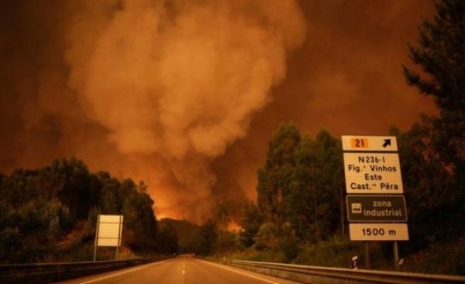 Yangından Kaçmak İçin Yola Çıkanlar Araçlarıyla Birlikte Yandı: 62 Ölü