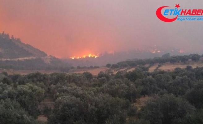 Denizli'de orman yangını nedeniyle 1 mahalle daha boşaltıldı