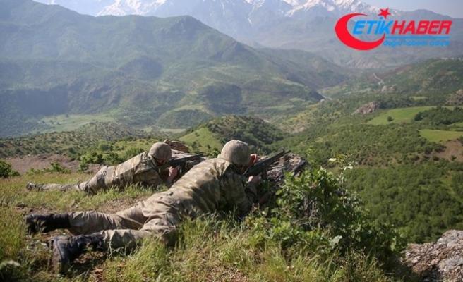 Terör örgütü PKK'ya son bir haftada ağır darbe