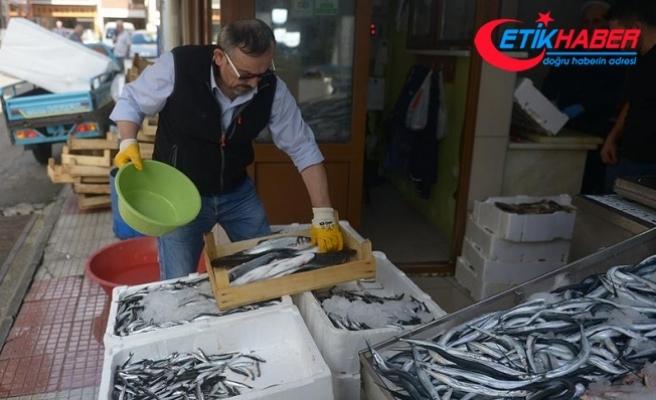 Av düşüklüğü balık fiyatlarını yükseltti