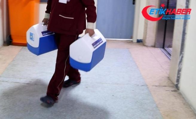 Ege Üniversitesinde yapılan karaciğer nakli bini geçti