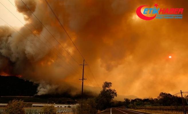 Kaliforniya'daki orman yangınlarında ölü sayısı 15'e çıktı