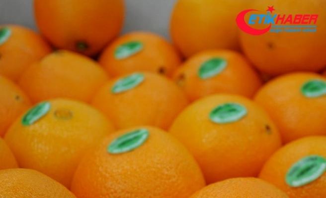 Meyve ve sebzelerin üzerine etiket yapıştırılamayacak