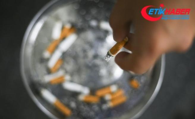 """""""Sigara üremeyi her yönden olumsuz etkiler"""""""