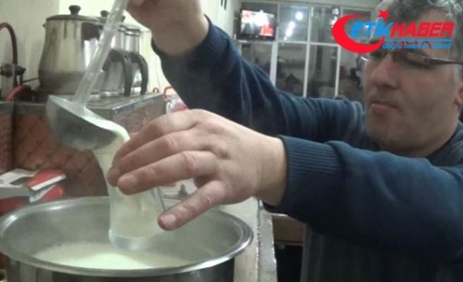Köy kahvesinde gecede 5 ile 15 litre arasında süt tüketiliyor