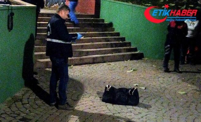 Parkta valize buzla konulmuş bebek cesedi bulundu
