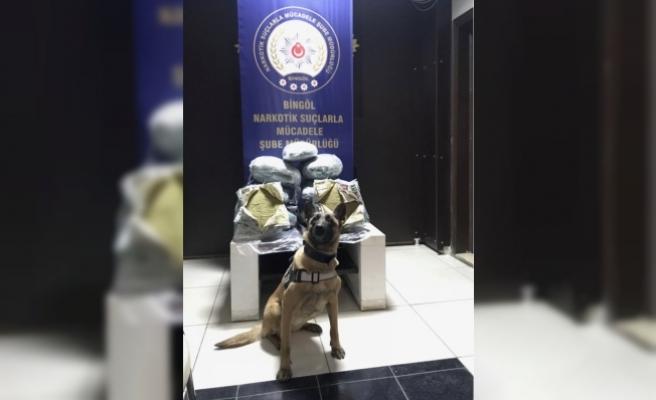 Bingöl'de 59 kilogram toz esrar ele geçirildi