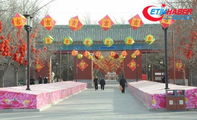 Çin Köpek Yılı'na giriyor