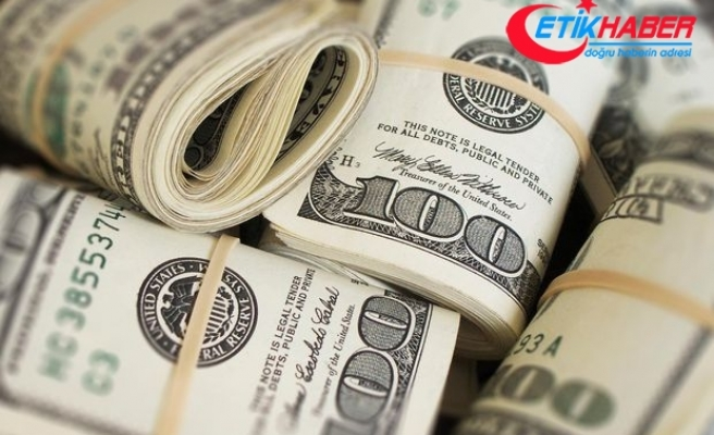 Merkez Bankası anketinde dolar tahmini