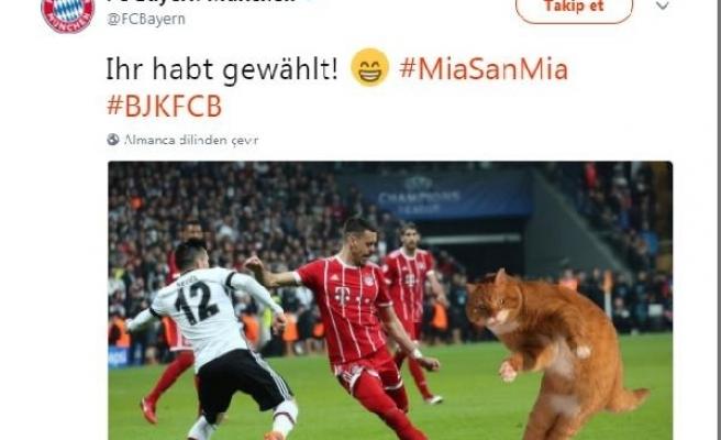 Alman basınında Beşiktaş-Bayern Münih maçının yankıları