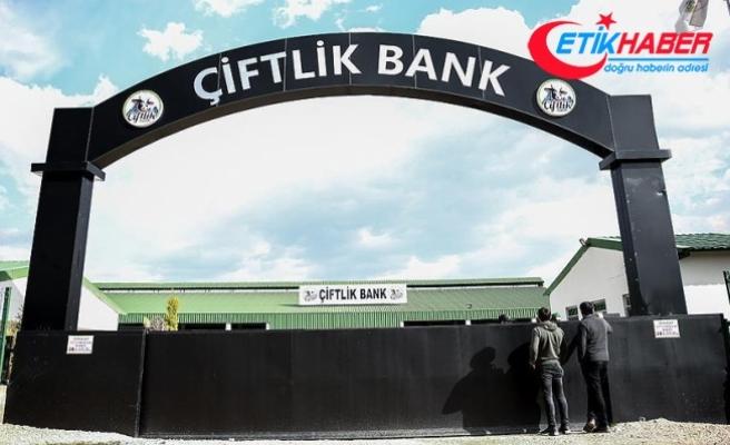Adana'da 'Çiftlik Bank' mağduru 53 kişiden polise başvuru