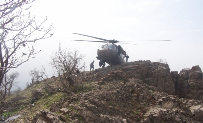 Tel Rıfat'ta 2 köye operasyon
