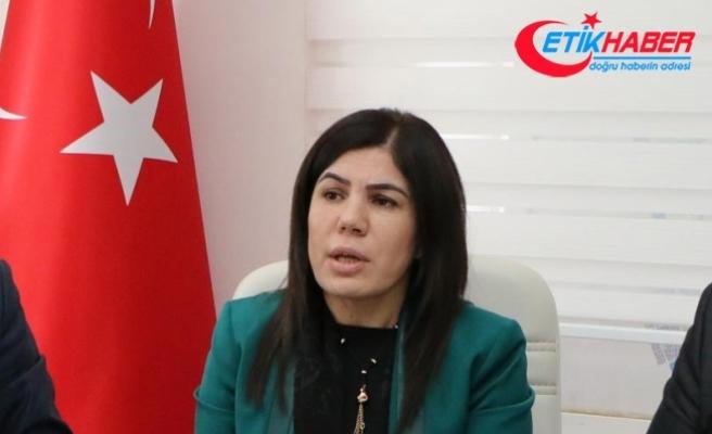 'Türkiye terör örgütleriyle mücadele eden tek ülke'
