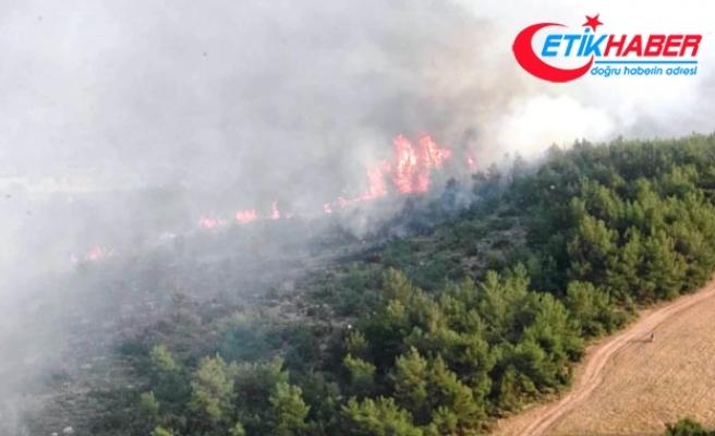 Fethiye'de 20 hektar orman yandı
