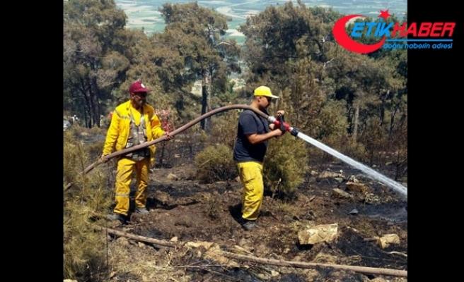 Kuyucak'taki yangında 25 hektarlık alan zarar gördü