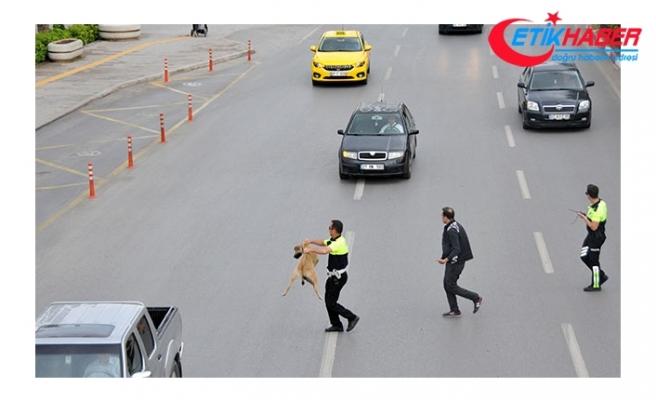 Trafik polisinden örnek davranış