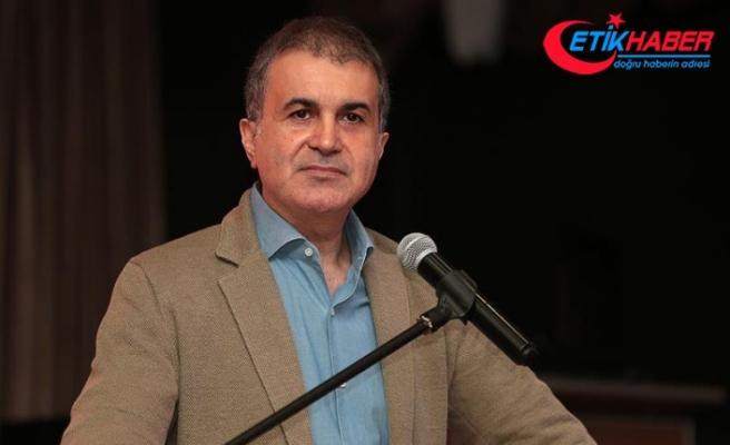 AB Bakanı Çelik: Avusturya Başbakanı ırkçılığın temsilcisi haline gelmiştir