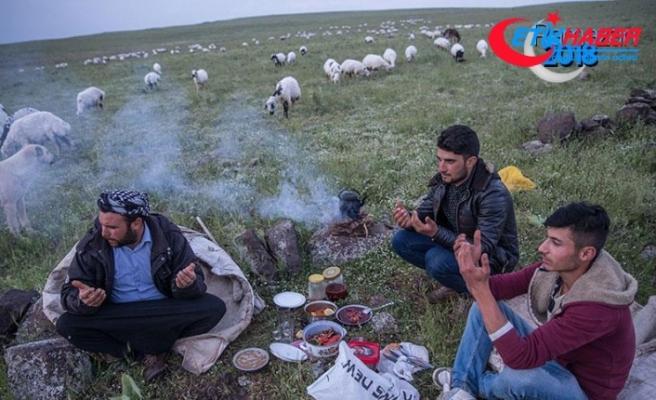 Çobanların iftarı da sahuru da merada