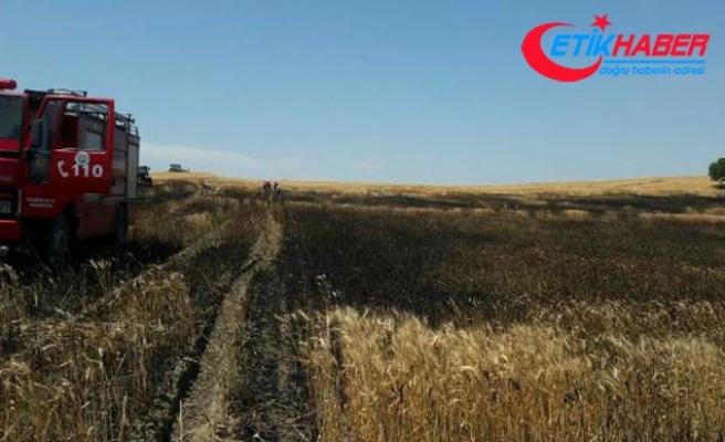 Edirne'de 20 dönüm buğday ekili alan yandı