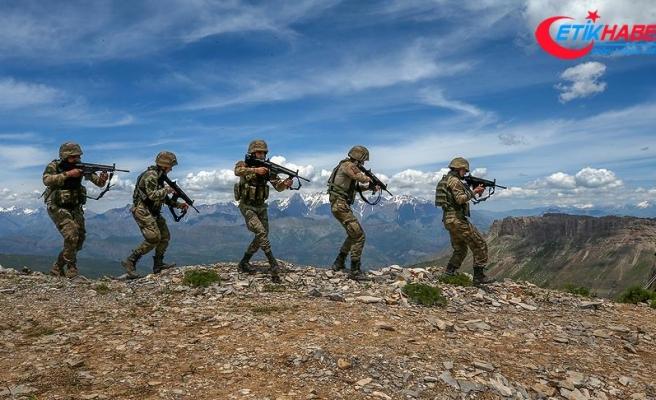 PKK'ya mayısta ağır darbe vuruldu