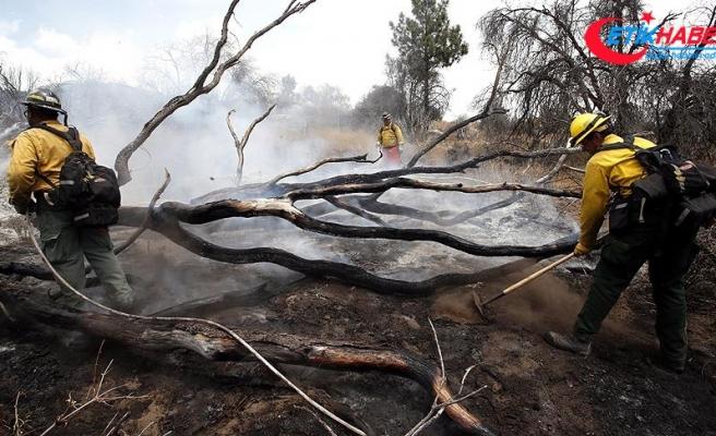 California'daki yangınlarda ölü sayısı artıyor