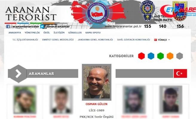 Diyarbakır'daki operasyonda gri listedeki terörist etkisiz hale getirildi