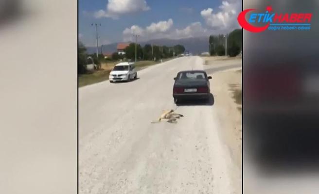 Köpeği otomobiliyle sürükleyen kişiye para cezası