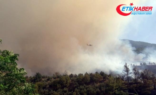 Orman yangını kontrol altına alınmaya çalışılıyor