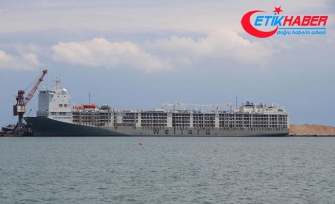 Uruguay'dan gelen 20 bin hayvan yüklü gemi Samsun'u kokuttu