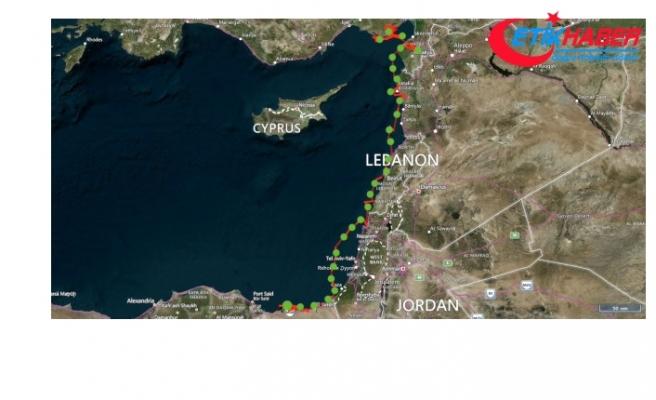 Vericiyle İzlenen Kaplumbağa 48 Günde Adana'dan Mısır'a Gitti