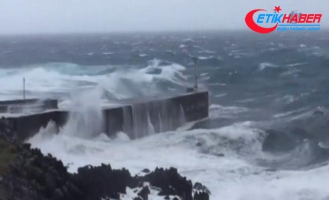 Aşırı sıcaklar yerini tayfun endişesine bıraktı