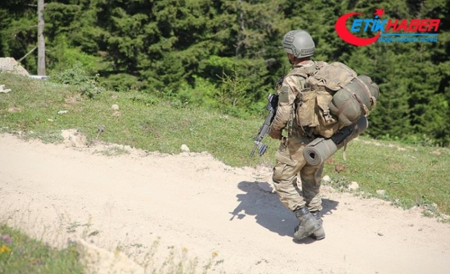 'Bebek katili' PKK'ya temmuzda ağır darbe