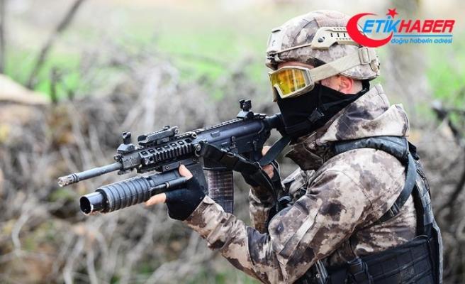 Bingöl kırsalında 3 terörist etkisiz hale getirildi